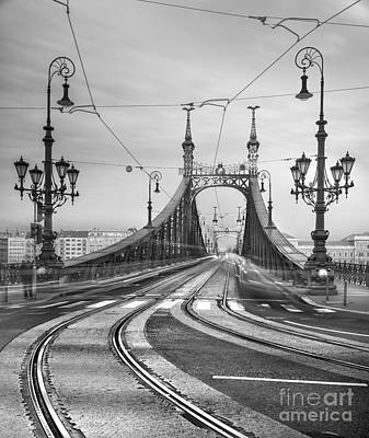 Photograph - Budapest - Liberty Bridge by Luciano Mortula