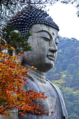 Photograph - Buddha In Autumn by Michele Burgess