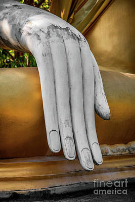 Photograph - Buddhas Hand by Adrian Evans