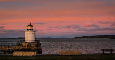 Photograph - Bug Light by Jane Luxton