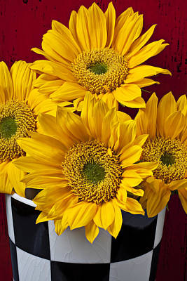 Checkers Photograph - Bunch Of Sunflowers by Garry Gay