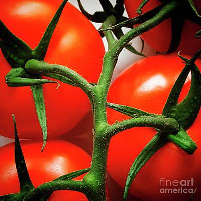 Healthy Eating Photograph - Bunch Of Tomatoes by Bernard Jaubert
