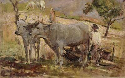 Cesare Painting - Buoi Con Contadino by Cesare Ciani