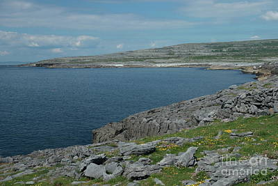 Photograph - Burren Collection by Peter Skelton