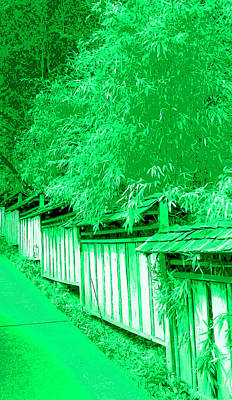 Bamboo Fence Digital Art - Butchart Gardens Fence Image by Paul Price