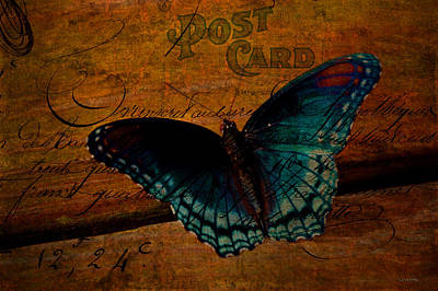 Photograph - Butterfly Art French by Lesa Fine
