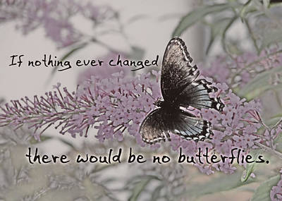 Photograph - Butterfly Kisses Quote by JAMART Photography