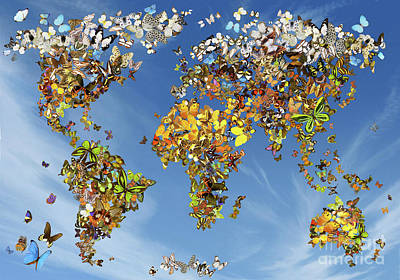 Geography Digital Art - Butterfly Map by Garry Walton