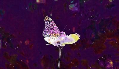 Butterfly Matting Macro  Art Print