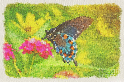 Photograph - Butterfly On Lantana - Digital Paint by Debbie Portwood