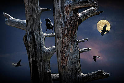 Surrealism Royalty-Free and Rights-Managed Images - By the Light of the Moon by Randall Nyhof