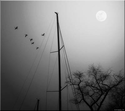 By The Pale Moon Art Print by Brian Wallace