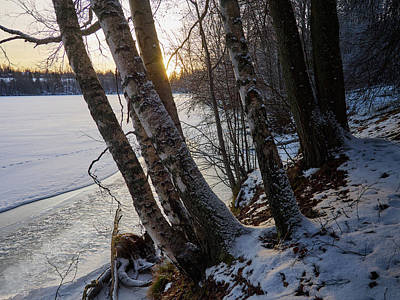 Photograph - By The River by Jouko Lehto