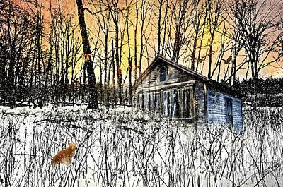 Photograph - Cabin Fever by Diana Angstadt