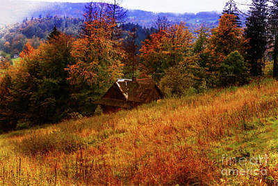 Photograph - Cabin In The Woods by Mariola Bitner