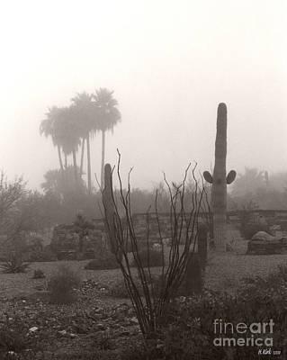 Photograph - Cactus Fog by Heather Kirk