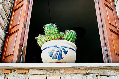 Cactus Art Print by Tom Gowanlock