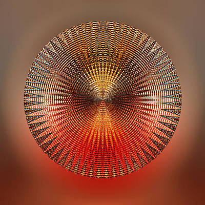 Cadence Art Print by Peter Lloyd
