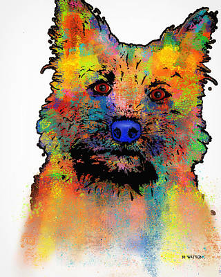 Digital Art - Cairn Terrier by Marlene Watson