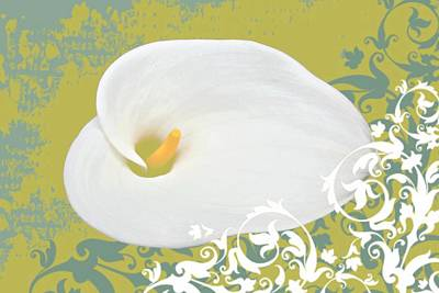 Lily Mixed Media - Calla Lily by Cathie Tyler