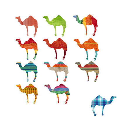Camel Wall Art - Digital Art - Camels by Art Spectrum