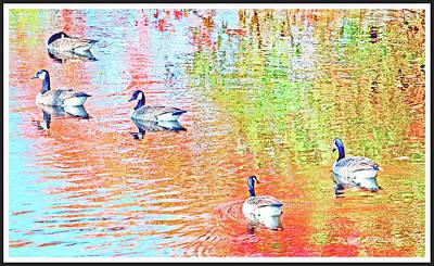 Photograph - Canada Geese On An Stream In Autumn by A Gurmankin