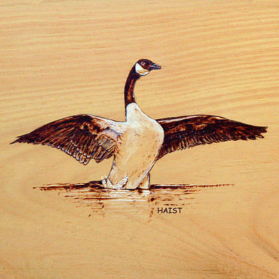 Pyrography - Canada Goose by Ron Haist