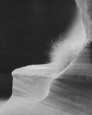 Photograph - Canyon X - Navajo Lands by Carl Amoth