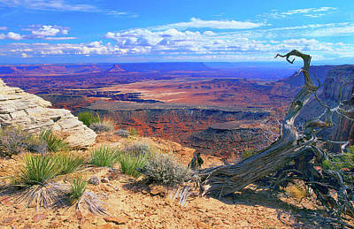 Photograph - Canyonlands by Frank Houck