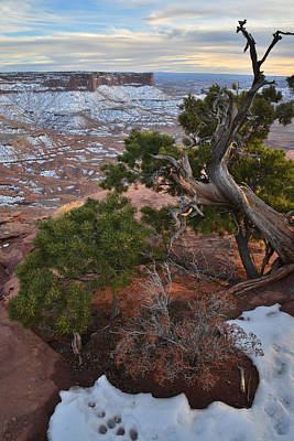 Photograph - Canyonlands Sunset by Ray Mathis