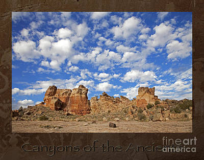 Photograph - Canyons Of The Ancients Skyline by John Stephens