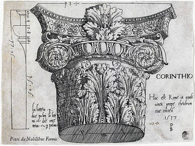 Drawing - Capital From The Colosseum, Rome by Master PS