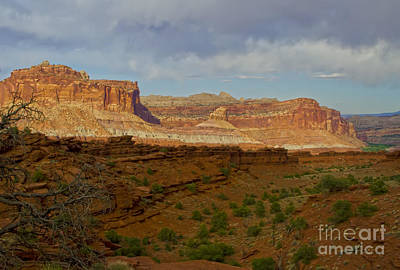 Photograph - Capital Reef, Utah by Waterdancer