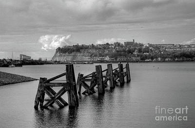 Photograph - Cardiff Bay Dolphins Mono by Steve Purnell