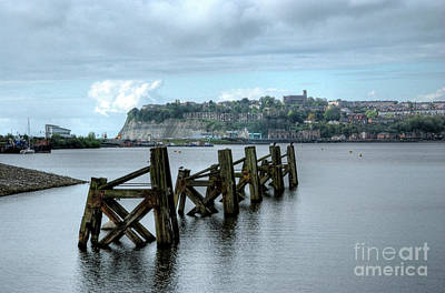 Photograph - Cardiff Bay Dolphins by Steve Purnell
