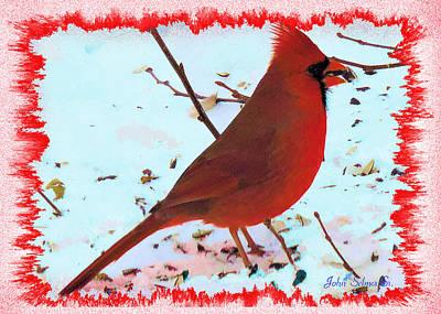 Photograph - Cardinal by John Selmer Sr