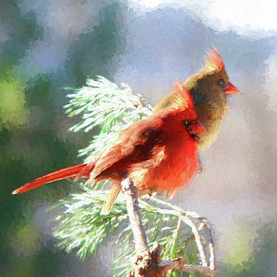 Photograph - Cardinals by John Freidenberg