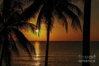 Photograph - Caribbean Sunset by Patricia Hofmeester