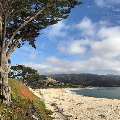 Photograph - Carmel River Beach by Charlene Mitchell