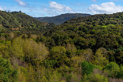 Photograph - Carmel Valley by Derek Dean
