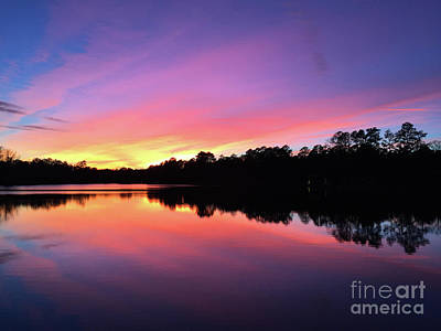 Photograph - Carolina Sunset  by Matthew Seufer
