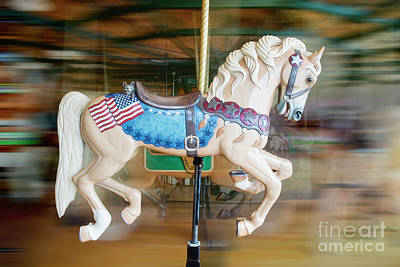Photograph - Carousel Horse by David Arment