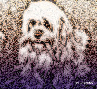 Puppies Digital Art - Cassie Girl by Robert Orinski