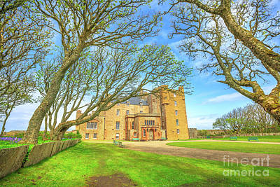 Photograph - Castle Of Mey Forest by Benny Marty