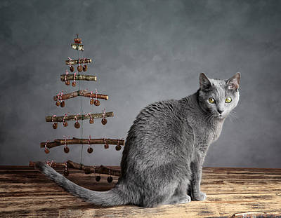 Cat Christmas Art Print by Nailia Schwarz