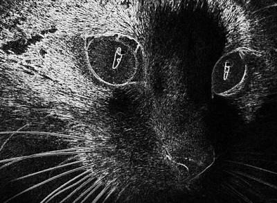 Digital Art - Cat Home Animal Cat S Eyes Eyes  by PixBreak Art