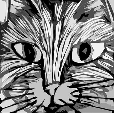 Drawing - Cat by Michelle Calkins