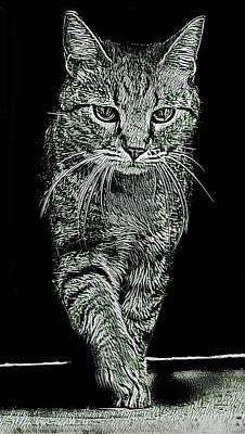 Wall Art - Digital Art - Cat Walk by David G Paul