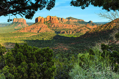 Photograph - Cathedral Rock by Ben Graham
