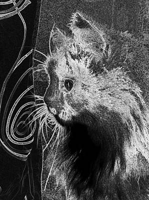 Digital Art - Cats Felines Cat Feline Animal  by PixBreak Art